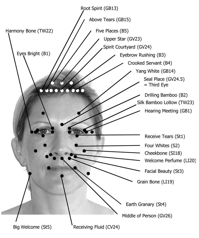 Acupressure points on the face and skull